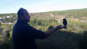 """A bird in the hand is better than two in the bush"" - Dr. Dan Parker showing us how it is done!"