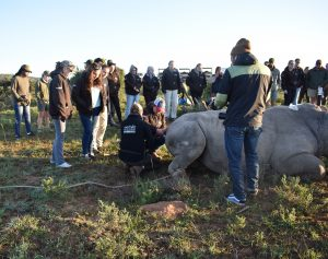 Some of the students were able to monitor the rhino's heart rate and respiration rate.