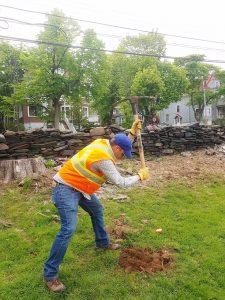 Tree Planting June 9, 2018