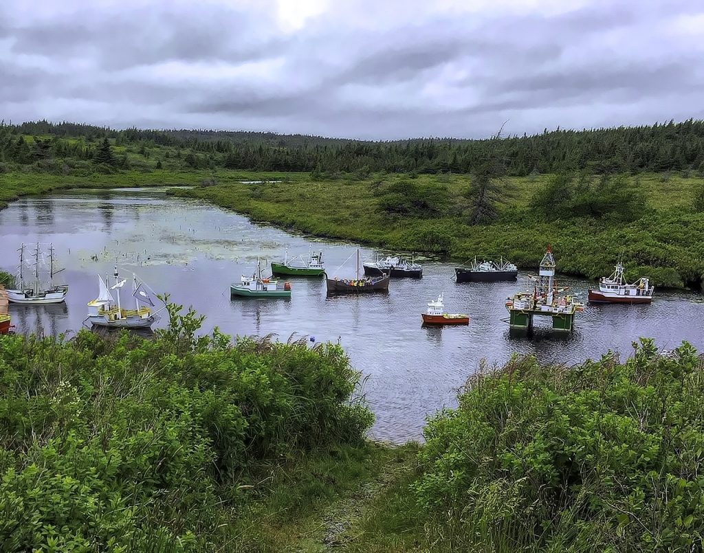 Mobile, Newfoundland and Labrador, Photo Credit Michelle Hunter