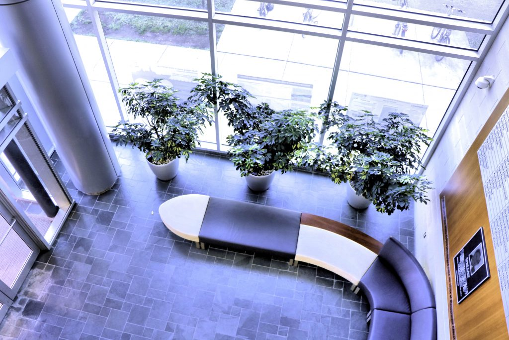 The Rowe Atrium
