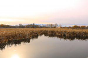 Lois Hole Centennial Provincial Park, Alberta