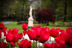 Halifax Public Gardens, Halifax, Nova Scotia