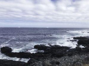 Coast of Newfoundland May 2019