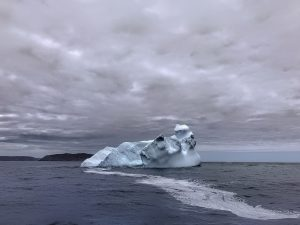 Iceberg Viewing, Newfoundland