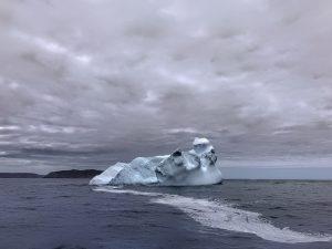 Iceberg Viewing, Newfoundland