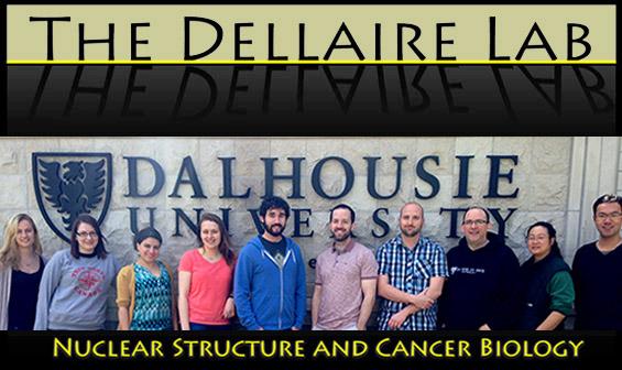 DellaireLab_logo2014