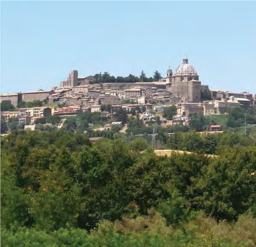 Montefiascone, Italy, 2006. Photo: Hans Peter Schaefer. Cropped image, used under Creative Commons CC BY-SA 3.0 license