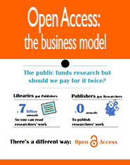 oopen access buisness model
