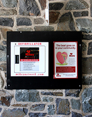 defibrillator 1 (2)