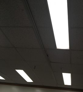 macrae lights 2