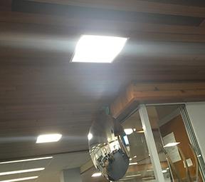 macrae lights