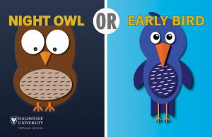night owls early birds digital asset