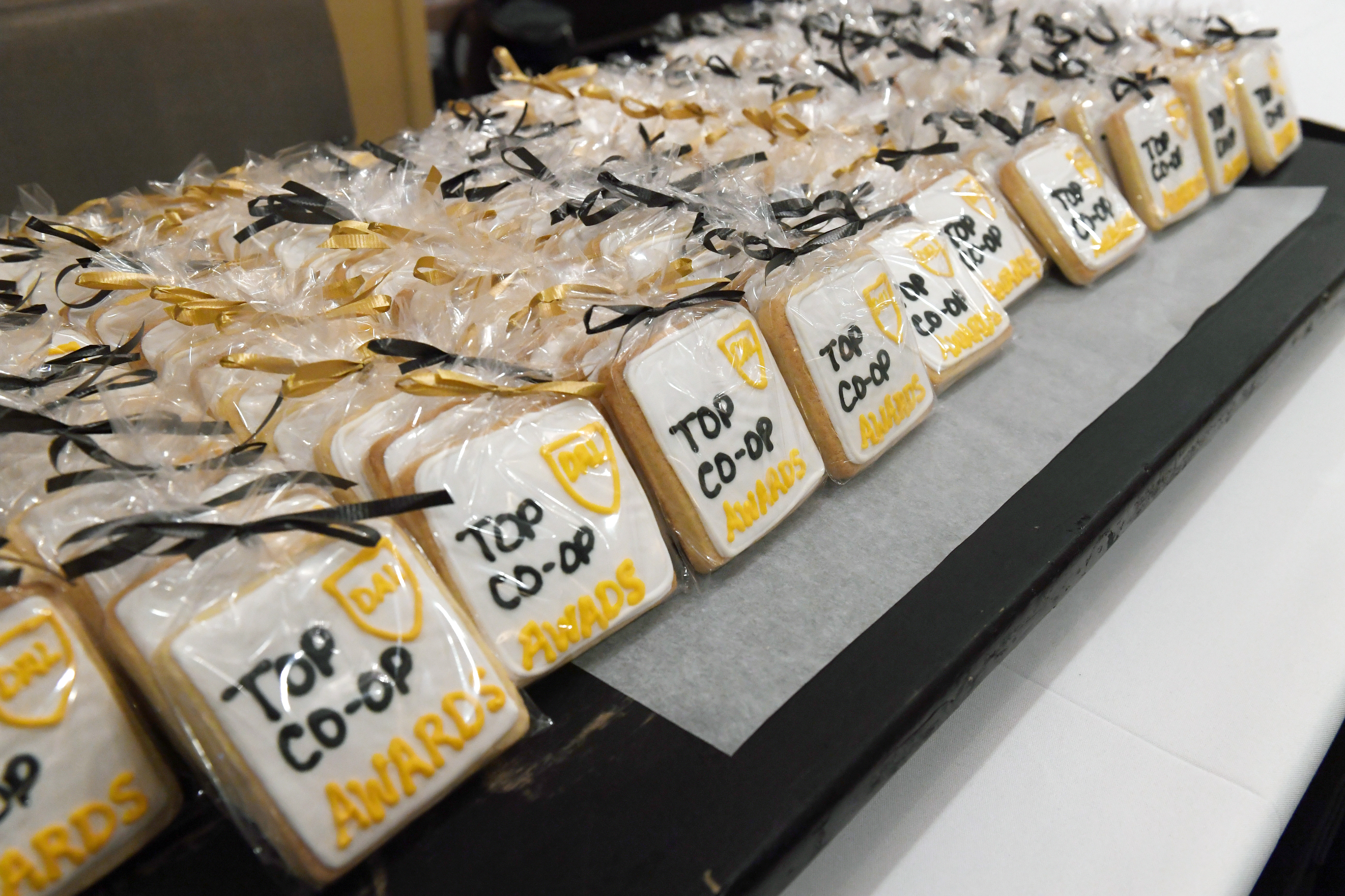 Celebrating the winners of the 2nd Annual Dalhousie Top Co-op Awards
